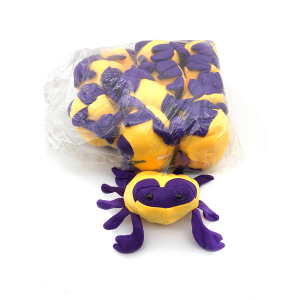 Purple And Gold Crab
